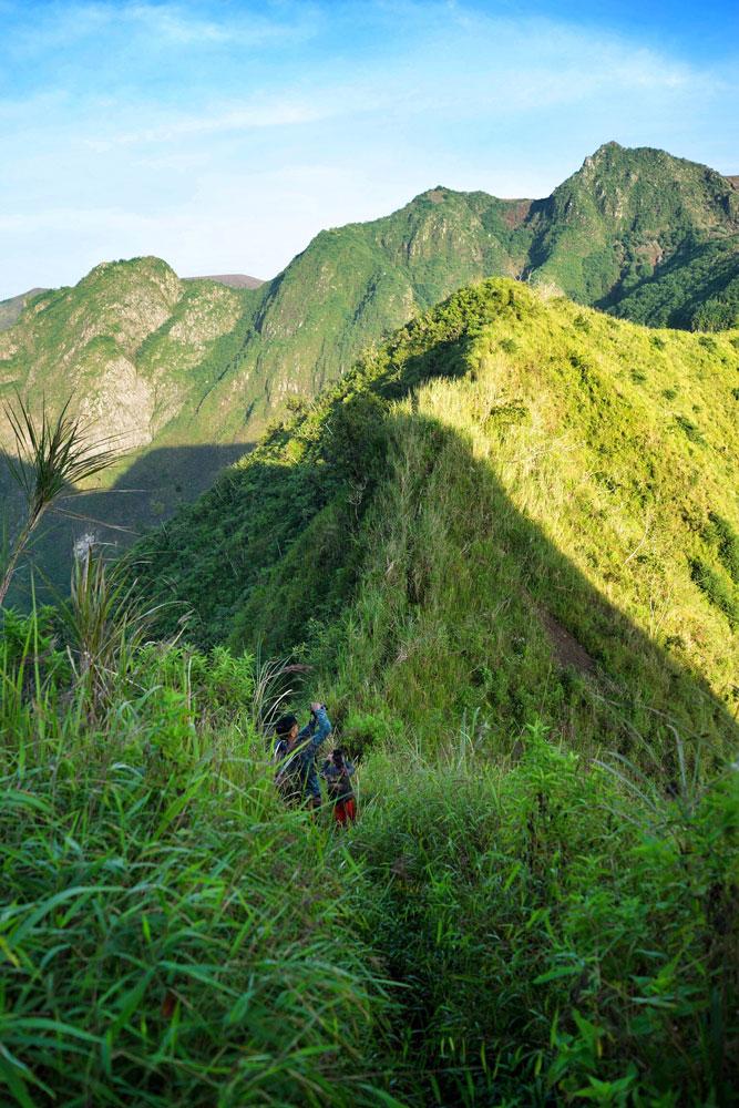 Jalanan menuju puncak Gunung Kelud yang tertutup tanaman