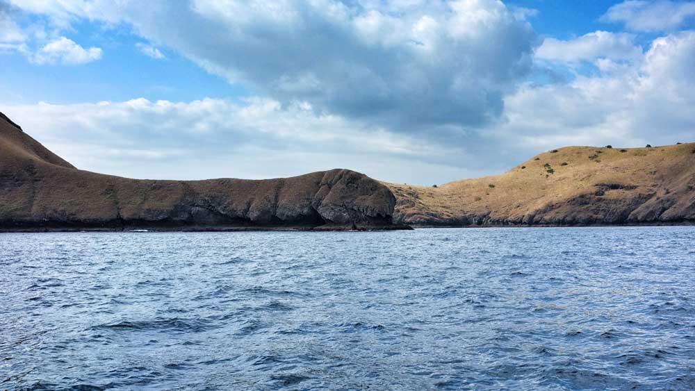 The island, just looks like Brachiosaurus