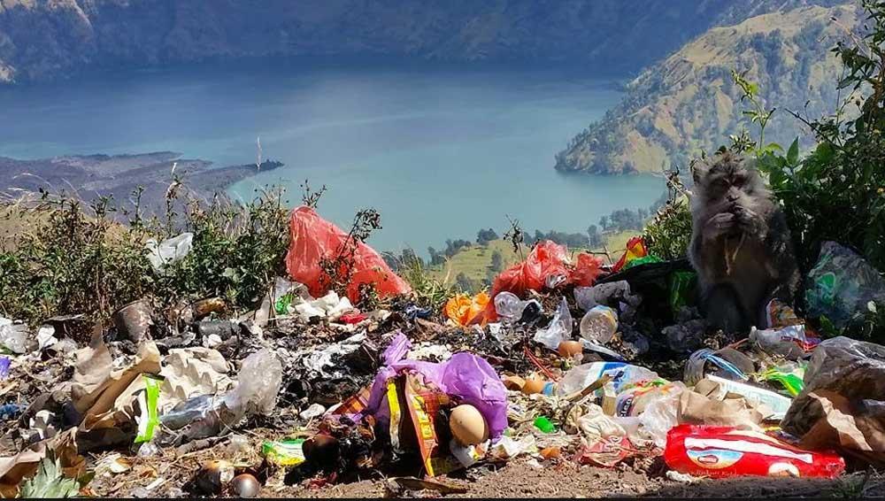 Source : - salah satu contoh sampah bertumpukan di Rinjani.