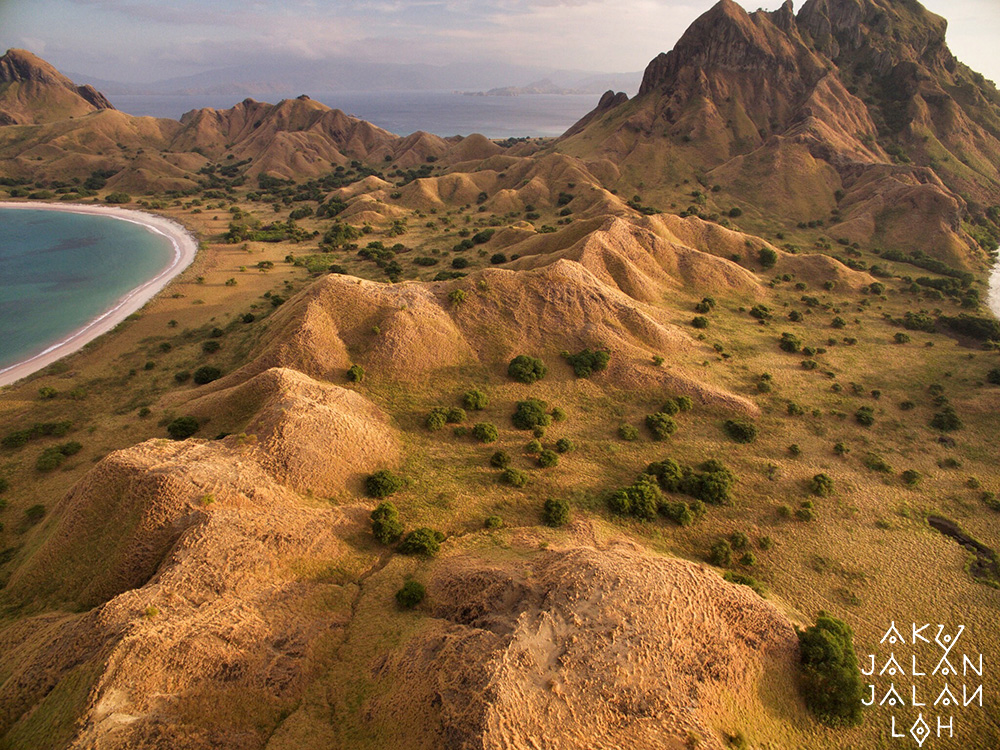 Asoka-Remadja-Pulau-Padar-Flores-3-Kuning-.jpg