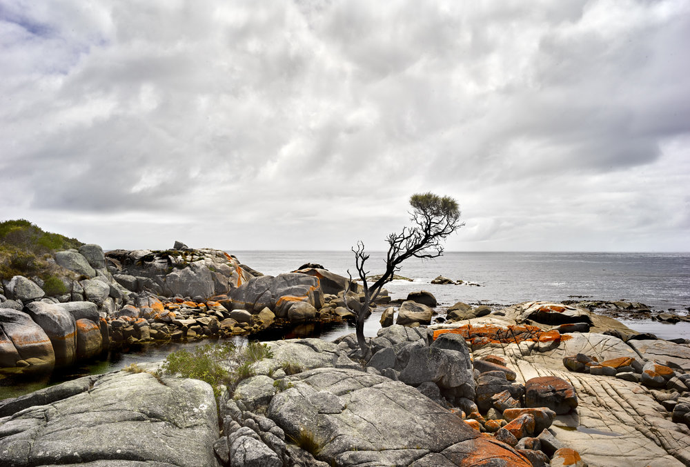 Binalong Bay 01.jpg