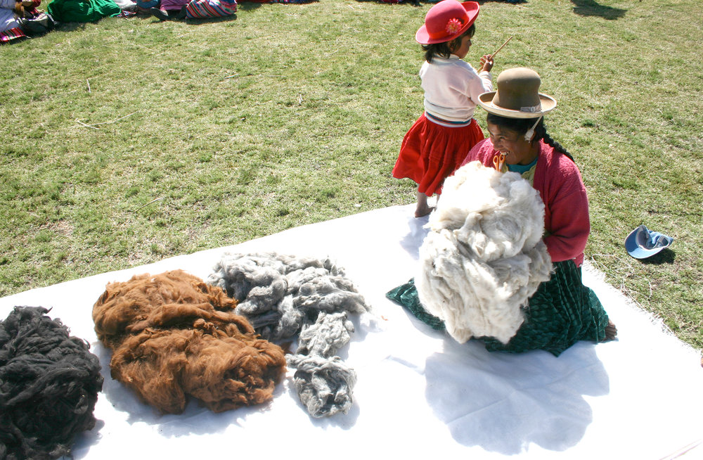 Natural colours of the alpaca wool.