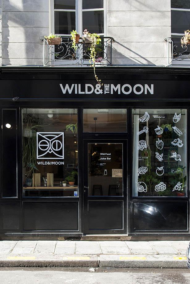 wild moon 073 .jpg