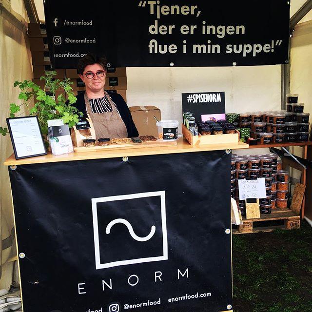 Vi er at finde på Food Festival i Århus hele weekenden. Kom forbi og smag vores INSEKTCHIPS! @foodfestivalofficial #århus #spisenorm #enormfood