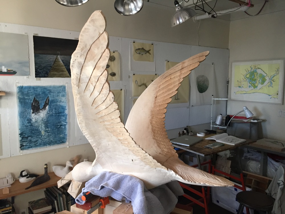 Another image of the black skimmer in progress, with some paintings on the wall behind
