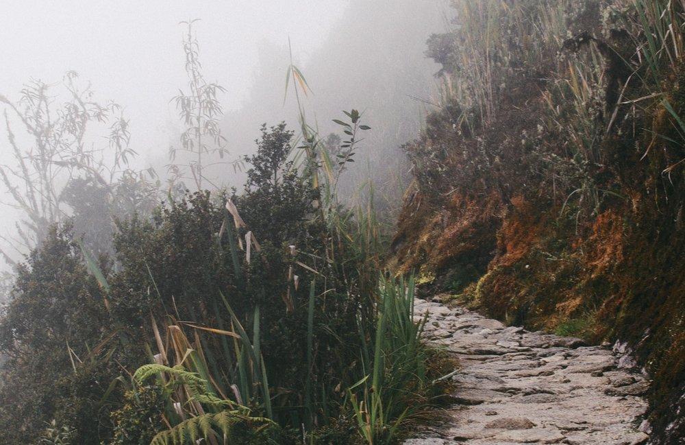 trail-867235.jpg