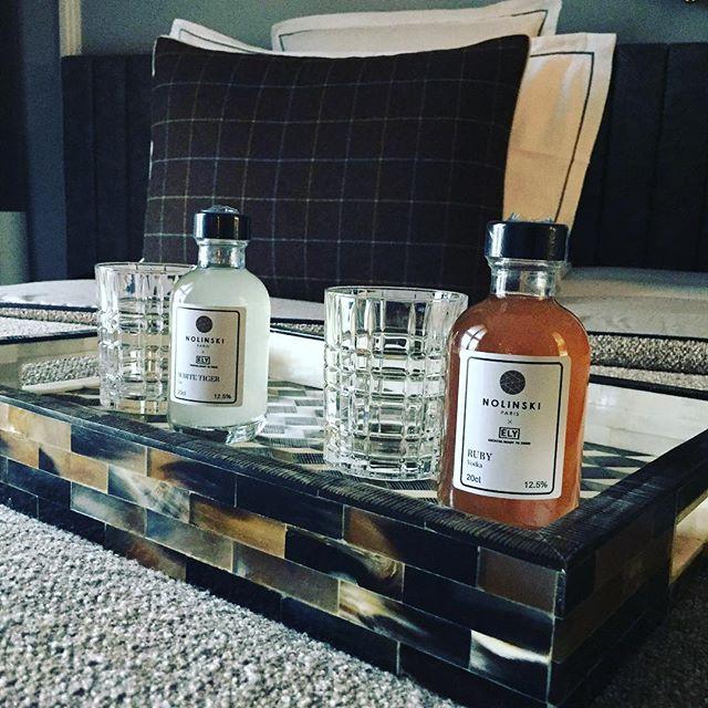Mini Bar Focus, vous en avez assez de trouver des boissons de mauvaise qualite dans vos mini-bar, Ely a decline sa gamme specialement pour l'hotellerie ou nous apparaissont aussi bien en co-branding qu'en marque blanche ou sous notre label. Le but etant d'amener l'experience cocktail au dela du bar, Cheers 🍸🍸 #elyscocktail #cocktail #readytodrink #fresh #madeinparis #drinkbetter