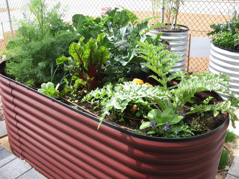 for garden to how kinds choose your materials of raised beds bed