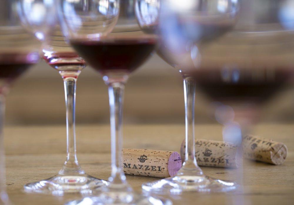 winetour1.jpg
