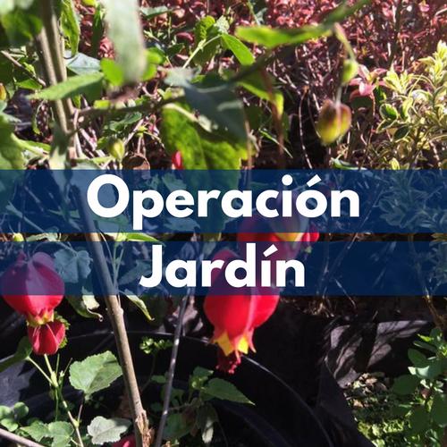 Operación Jardín.png