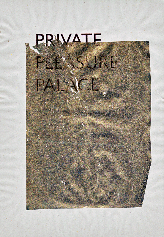 privatepleasurepalace.jpg