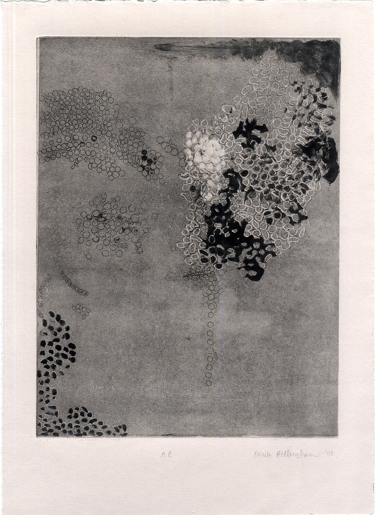 oldprint_cells2.jpg