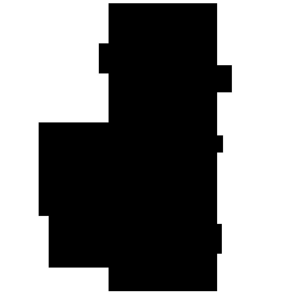 Poynter Photo Co. Logo.png