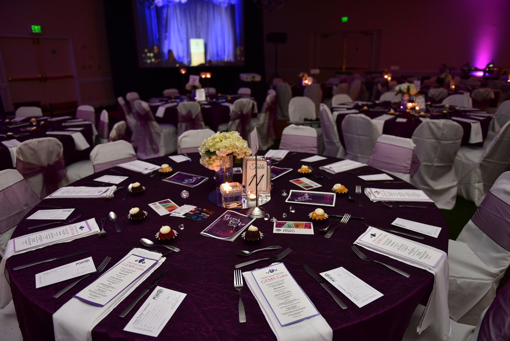 GEMS Gala 2017 - Fundraising Dinner & Awards Ceremony