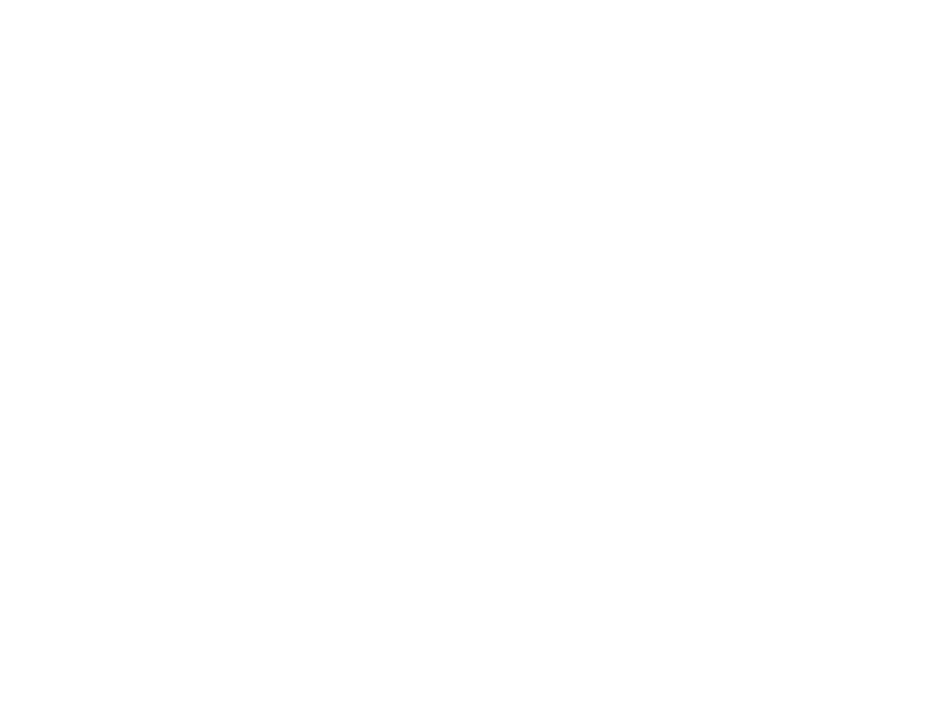 Main Field Projects