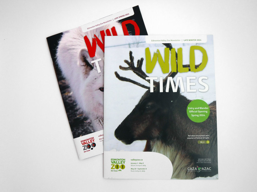 Natasia Designs Edmonton Alberta Graphic Designer Magazine Design Newsletter Edmonton Valley Zoo