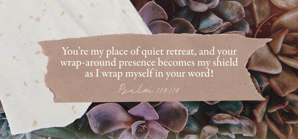 3. psalm 119 114.jpg