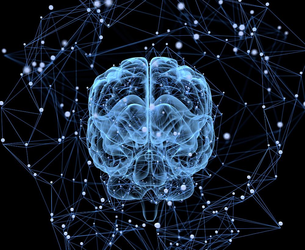 Resultado de imagem para brain project