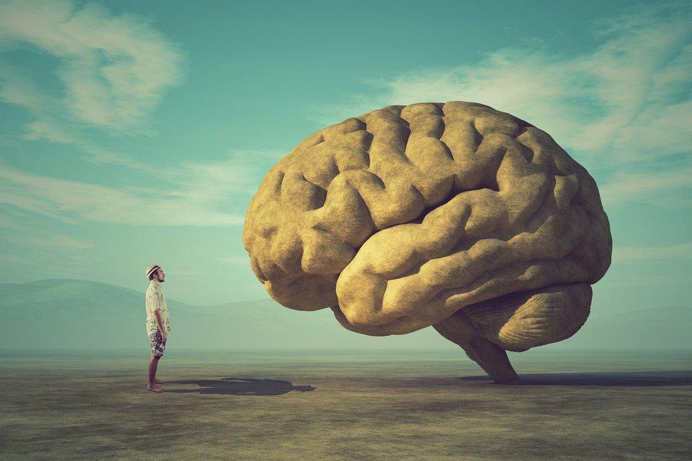 Staring+at+brain.jpg