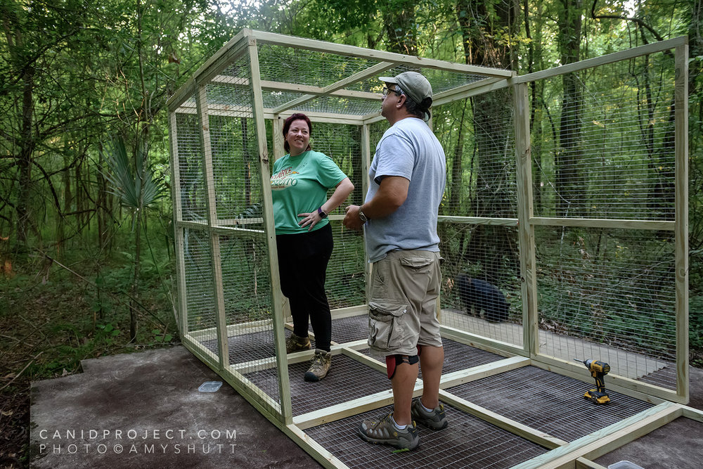 Julie and Mike stand in a nearly finished enclosure
