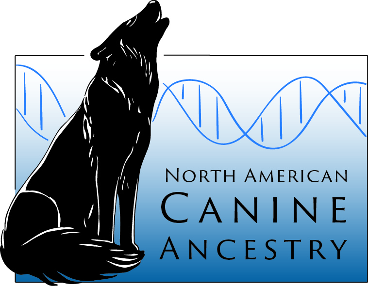 Ancestry Genetics of North American Canids - The Canine Ancestry Project is a collaborative project led by Dr. Bridgett vonHoldt of Princeton University. It is represented by multiple institutions and experts in canine biology, ecology, and genetics. The Canid Project is proud to be a contributor and act as the local coordinator for Louisiana of this project.See more: HERE