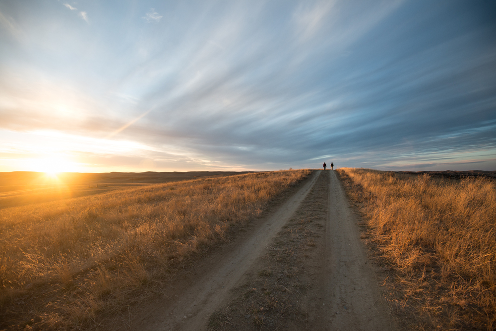 Rhys Morgan Images_American Prairie Reserve-7514.jpg