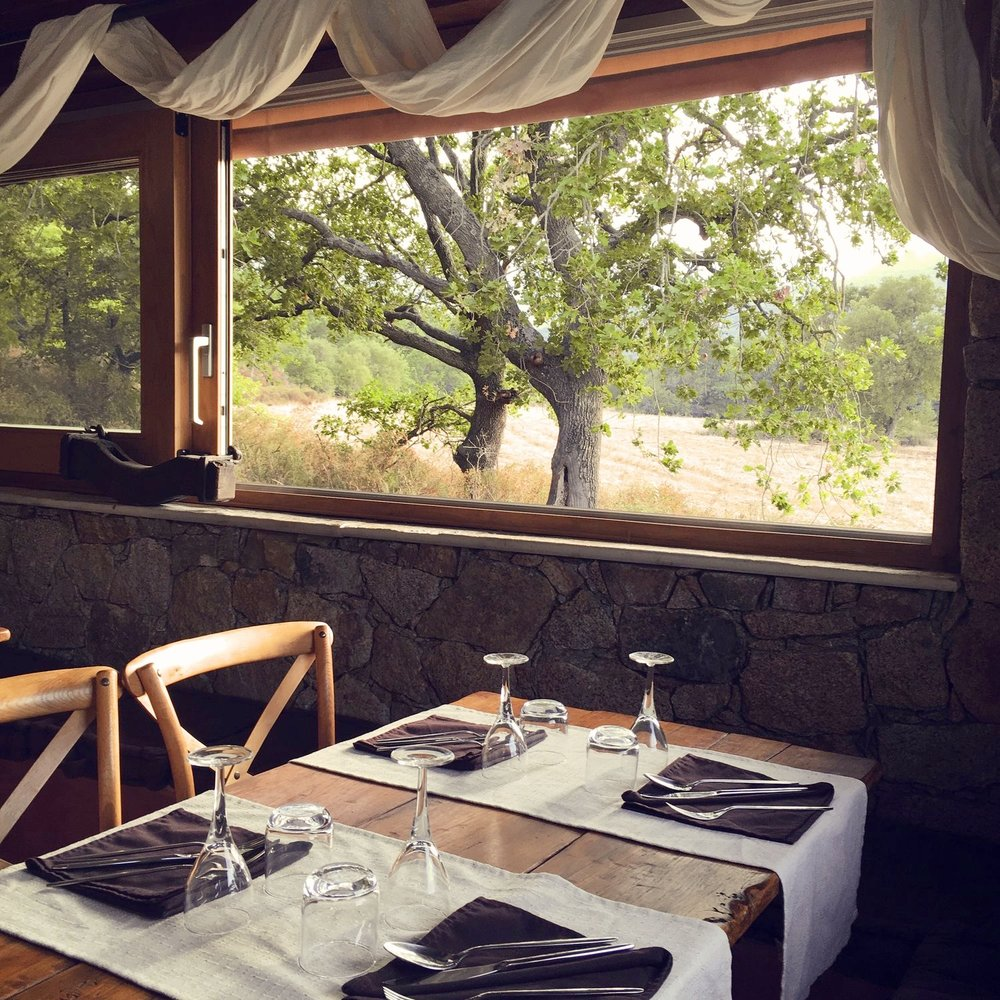 Travellur_corsica_family_luxury_boutique_dining.jpg