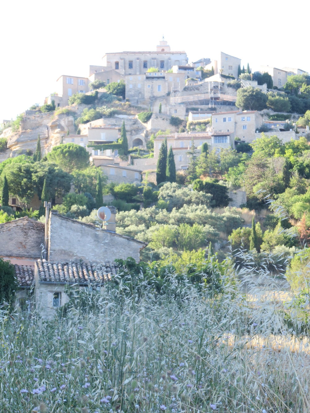 travellur_slow_travel_france_lavender_land_beauty_hill.jpg