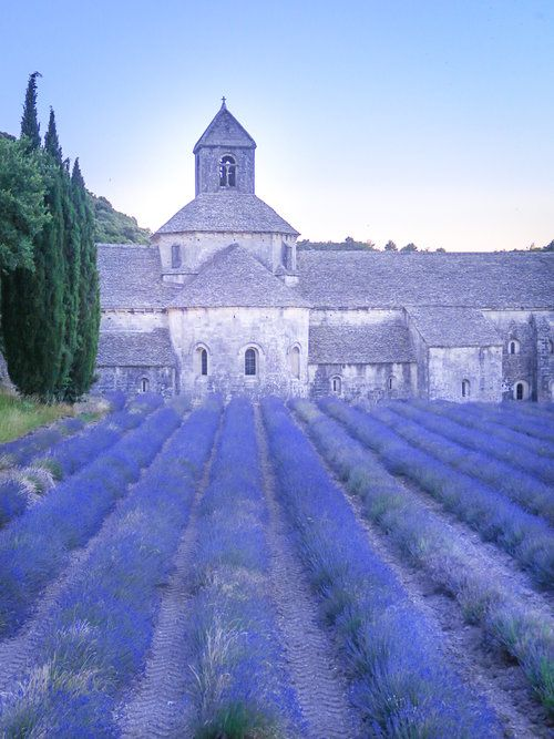 travellur_slow_travel_france_lavender_land_beauty_hill_12th_century_Abbey_Senaque_pilgrimage.jpg