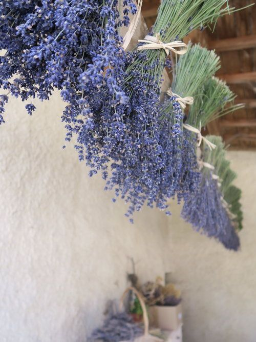 travellur_slow_travel_france_lavender_land_village_drying