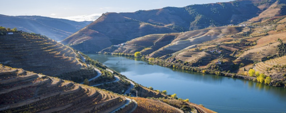 Douro Valley.png