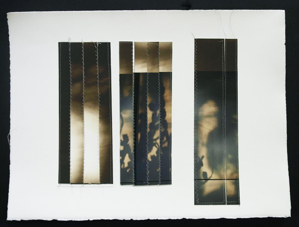 "Meshes, 11.5""x5"", Archival digital photograph, paper, silk thread, 2014"