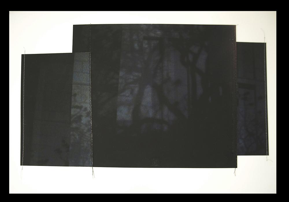 "Nightbirds, 11""x17"", Archival digital photograph, paper, silk thread, 2013"
