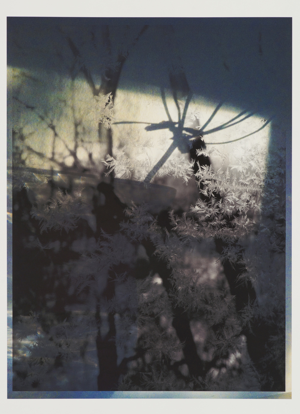 "Winterlight, 13""x19"", Archival digital print, 2015"