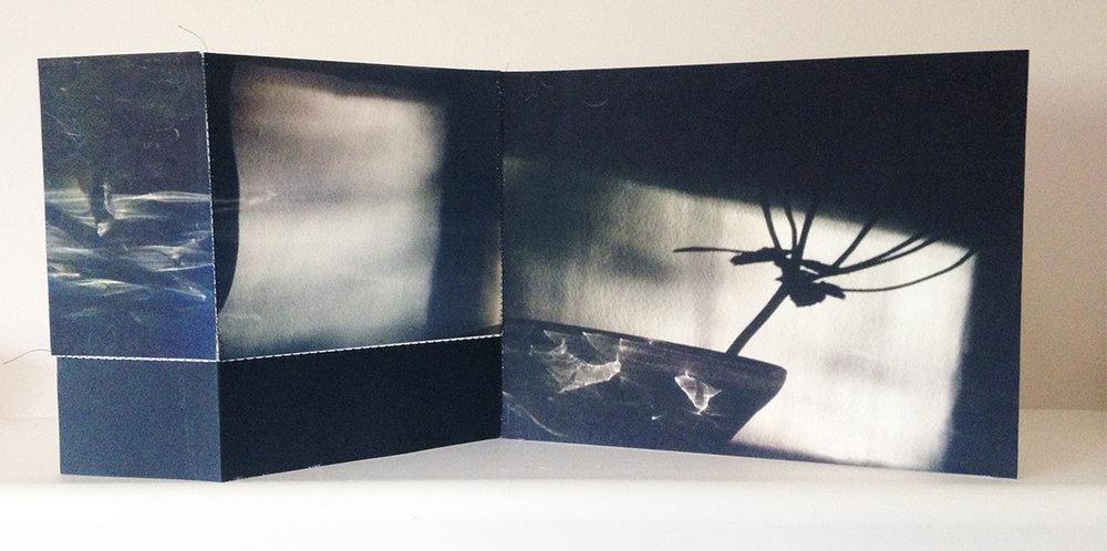 "Mantel, 21""x13"", Archival digital photograph, paper, 2014"