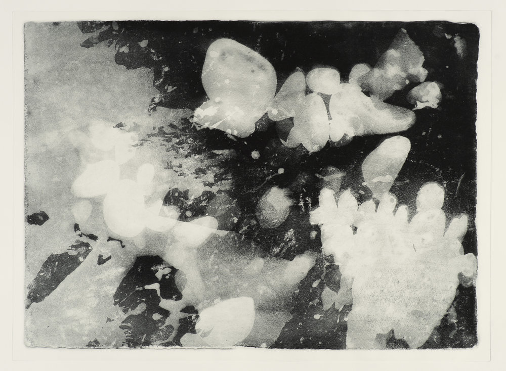 "Shoreline #3, photogravure, ed. of 3. 30""x22"", 2018"