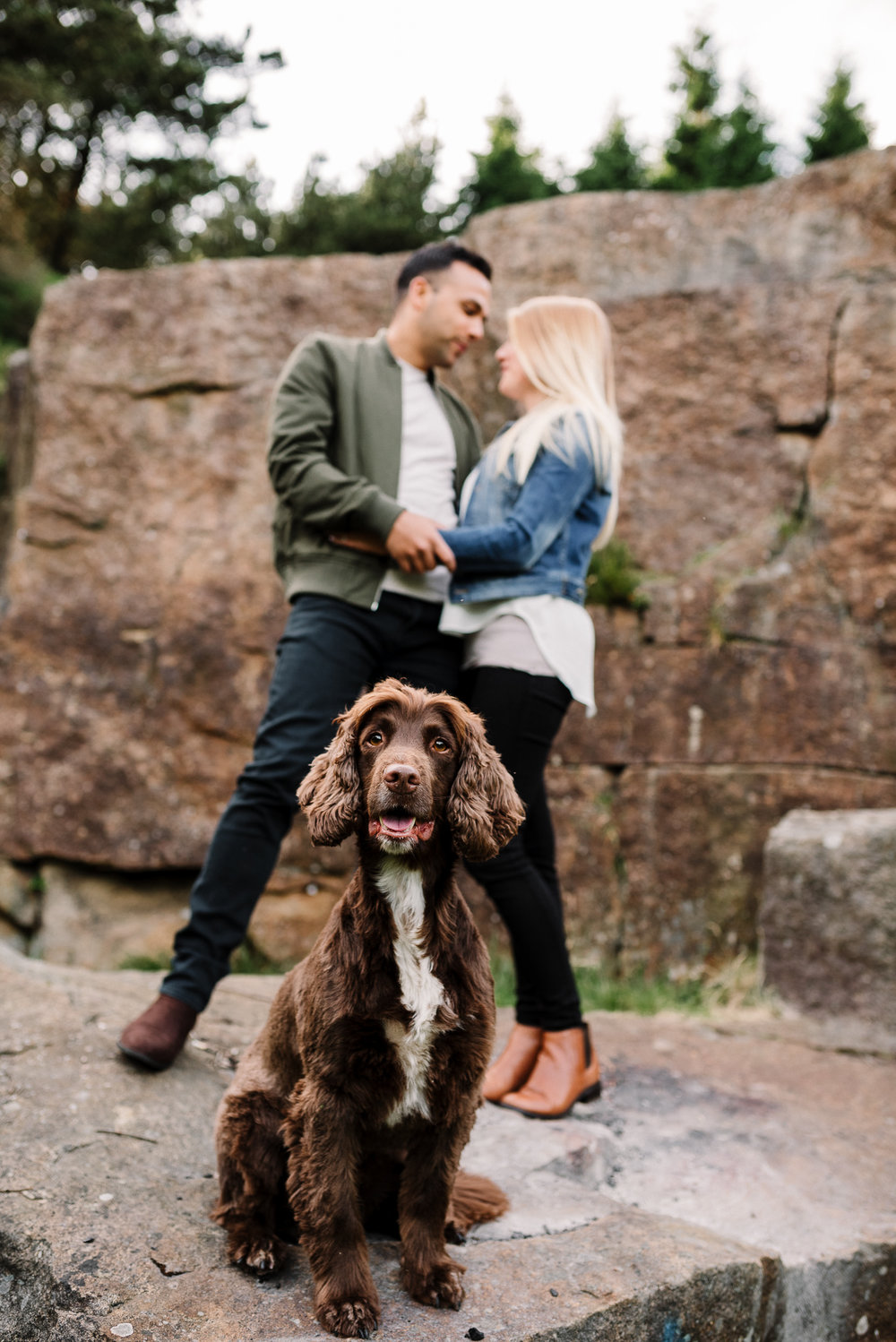 Dog portrait with owners in the background. Lancashire lifestyle photographer