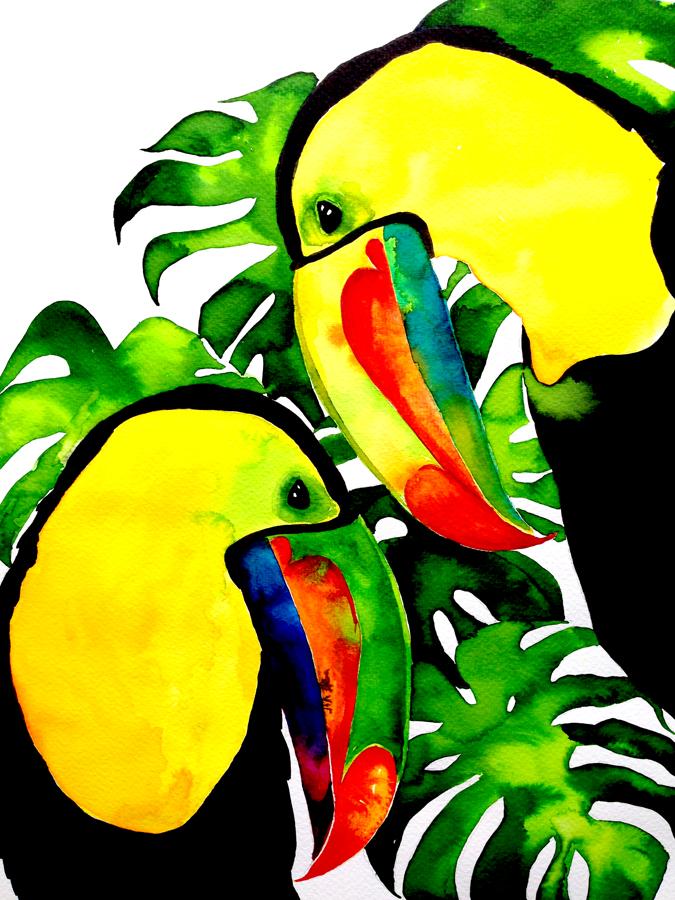 nadine-walker-illustration-bird-tocan.jpg