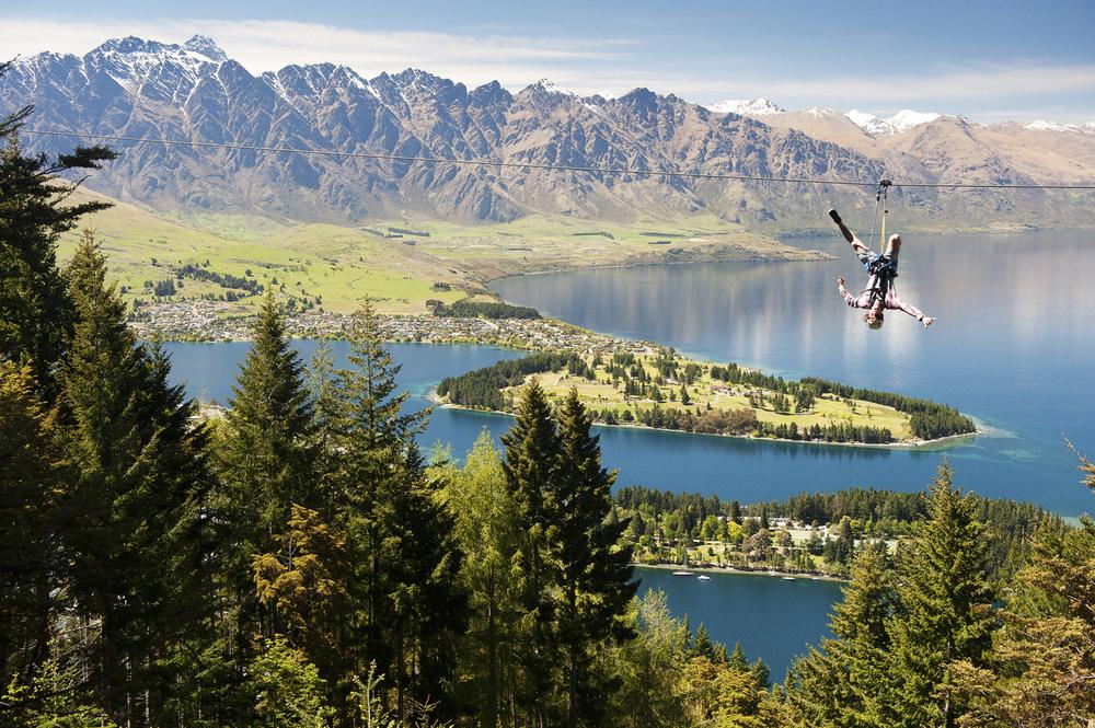 New Zealand Ziptrek.jpg