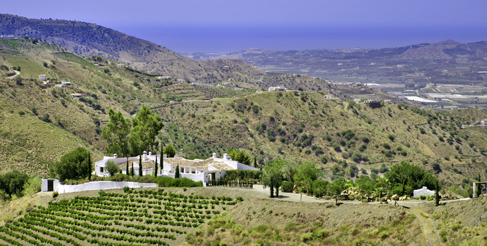 Olivers Travels Cortijo Maria Andalusia.jpg