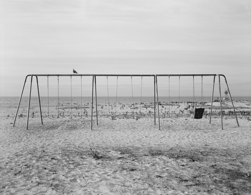 Swings Near the Shore