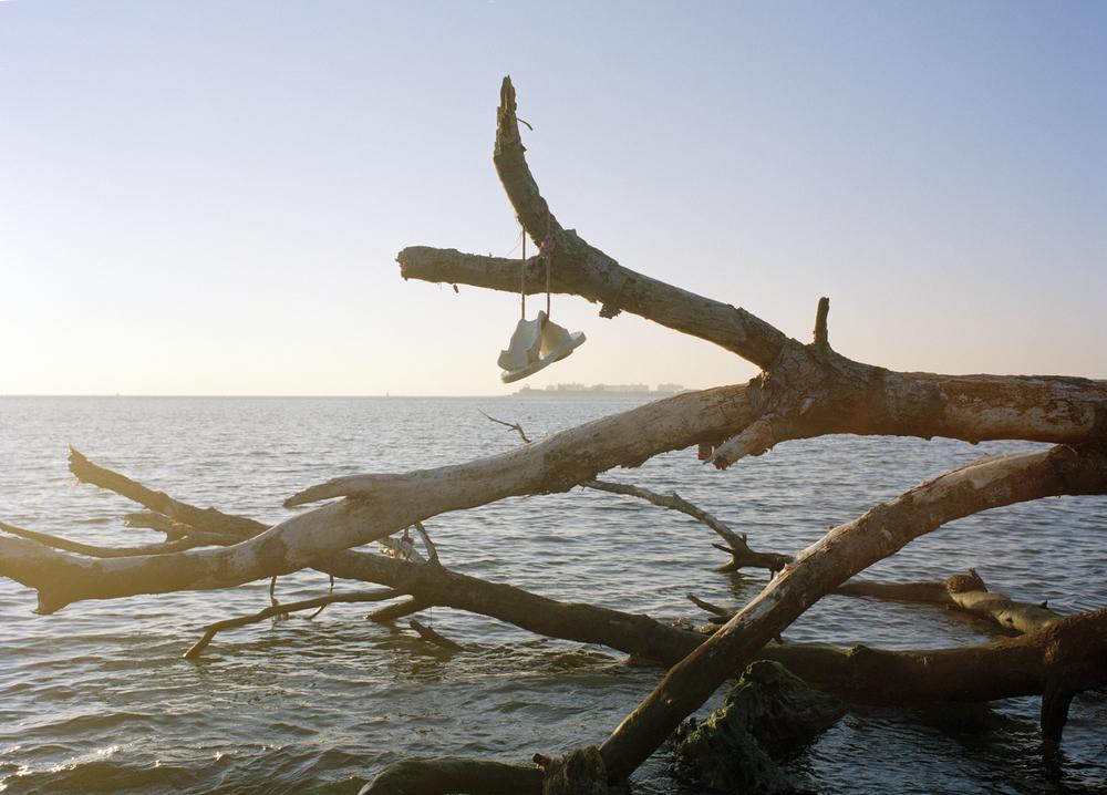 Debris at Deadhorse Bay