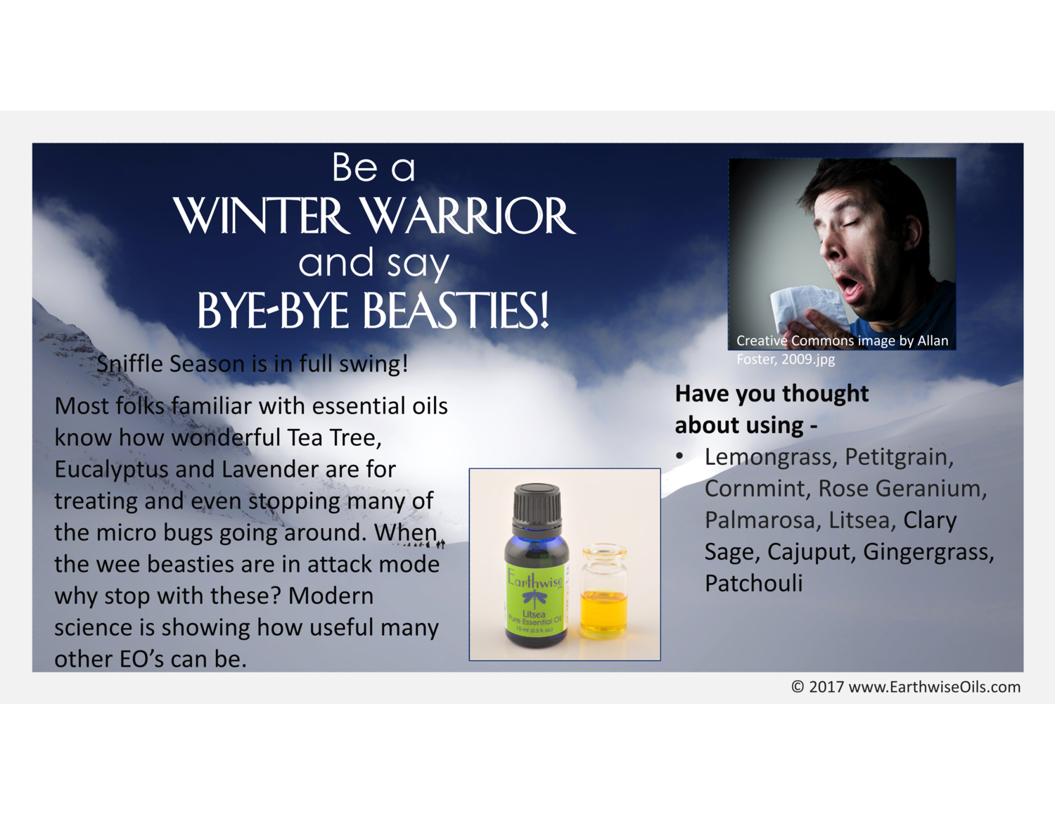 Bye-Bye Beasties — Earthwise Oils