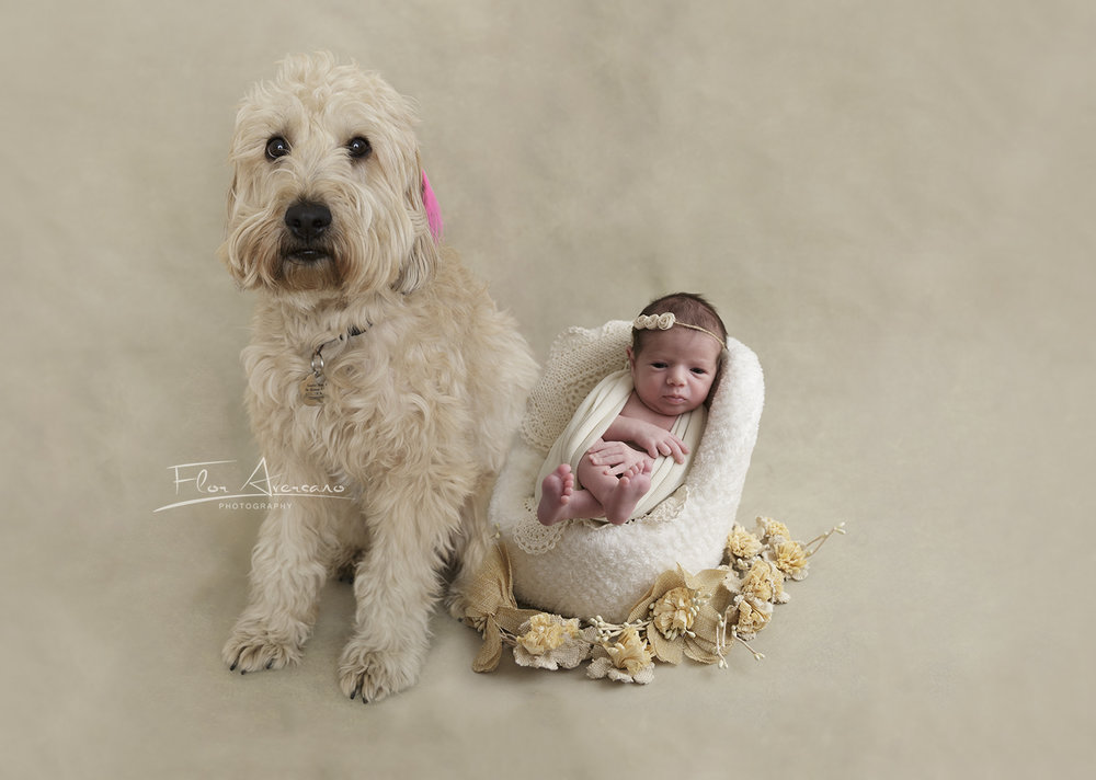 Newborn + doggy
