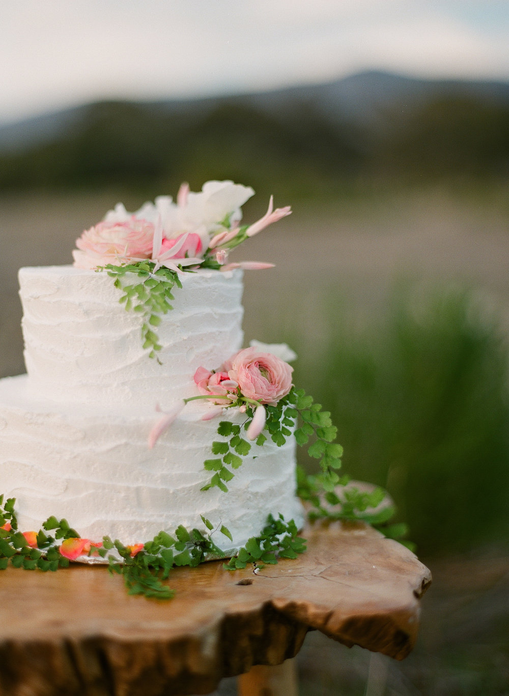 www.santabarbarawedding.com | Megan Sorel Photography | Wedding Cake