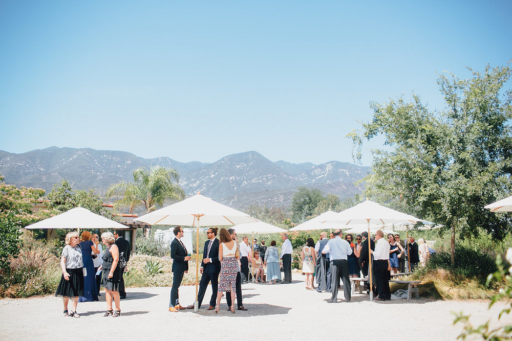 www.santabarbarawedding.com | Bijoux Events | Ojai Estate Wedding | Marble Rye Photography | Elli Lauren Photo | Cocktail Hour