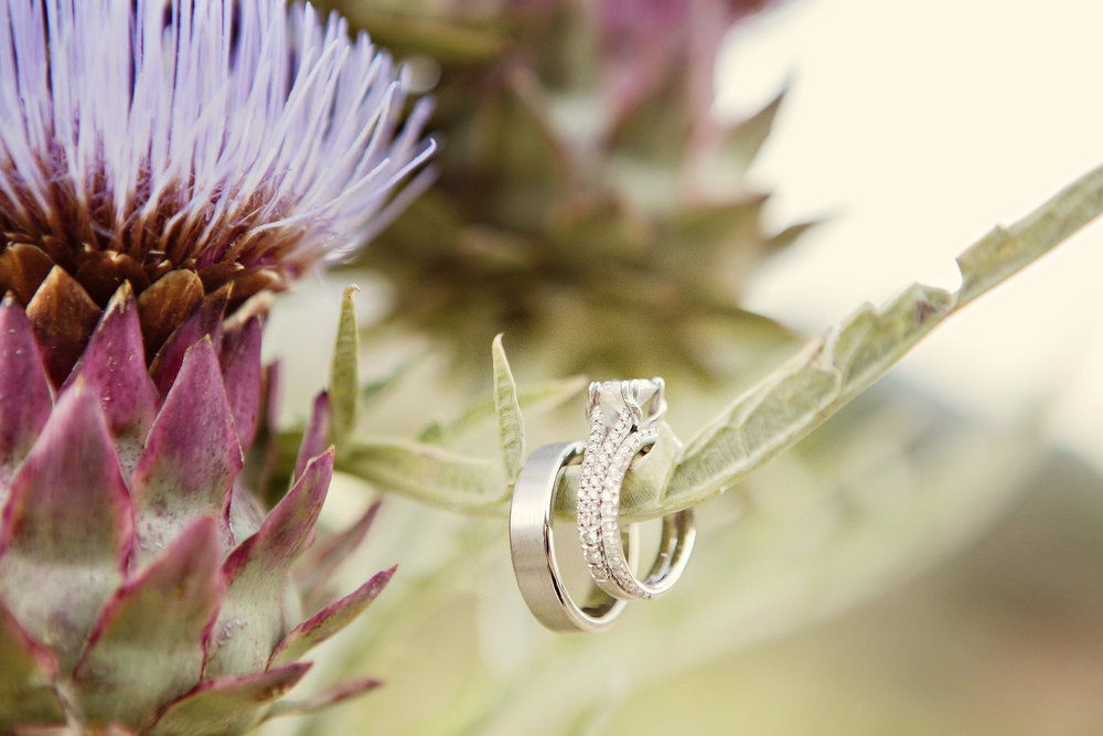 www.santabarbarawedding.com | Andrejka Photography | Red Tail Ranch | Wedding Rings