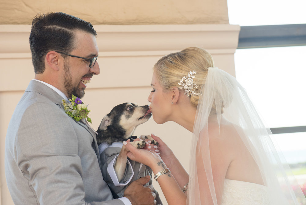 www.santabarbarawedding.com | By Cherry Photography | Chase Palm Park | Bride and Groom and Dog