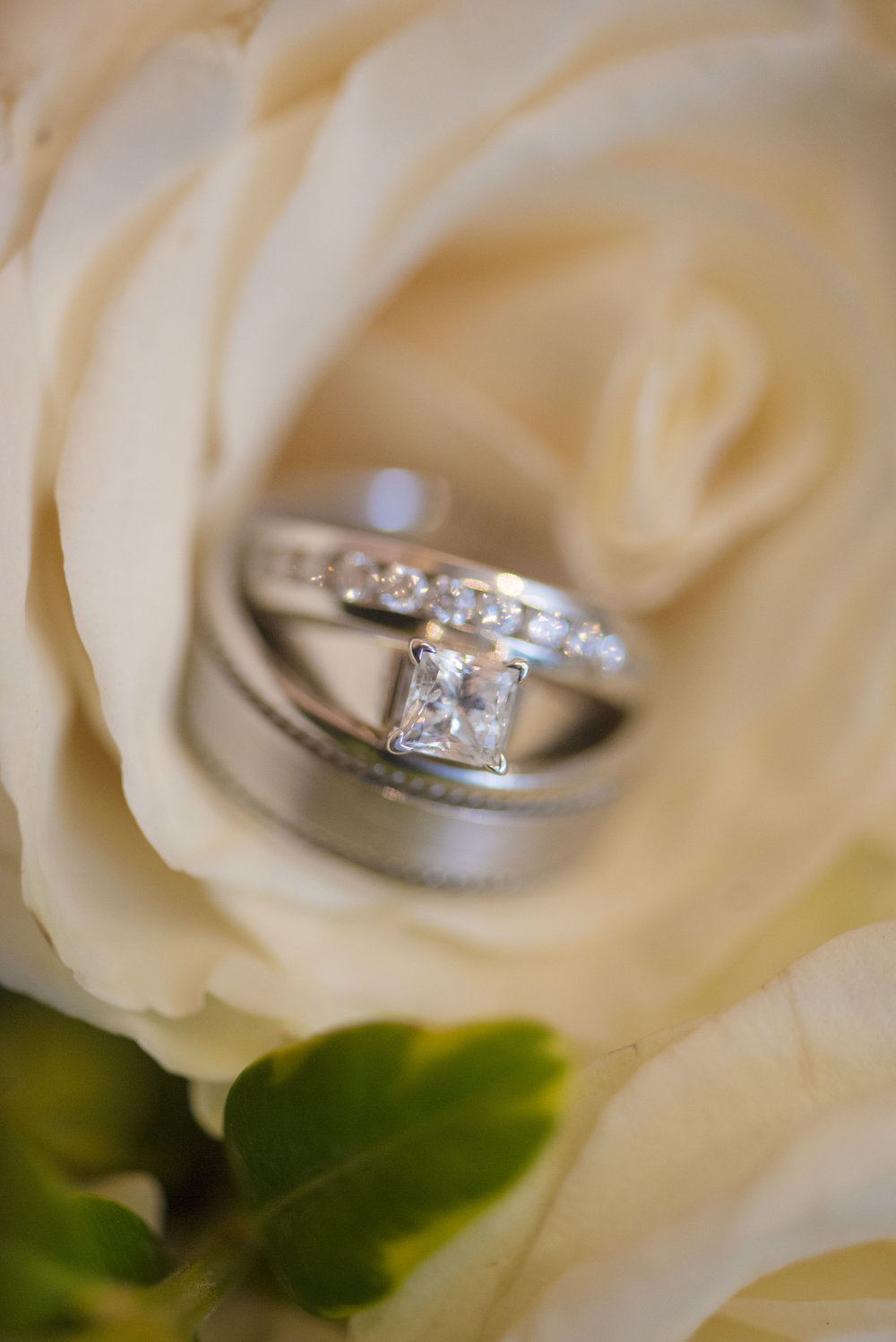 www.santabarbarawedding.com | By Cherry Photography | Chase Palm Park | Wedding Rings