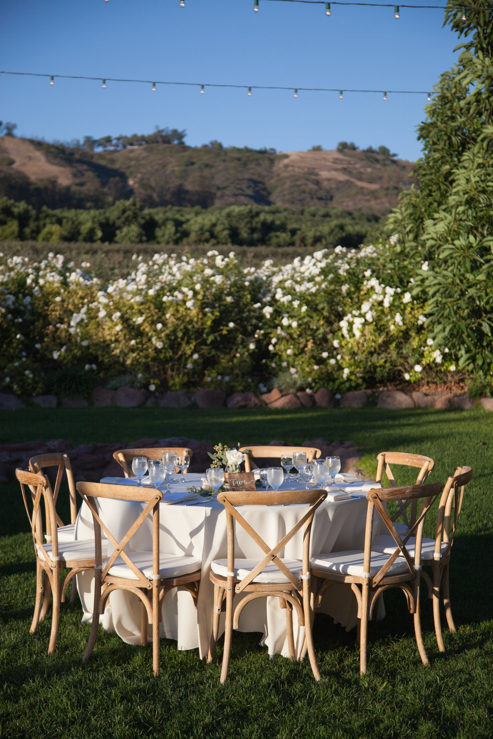 www.santabarbarawedding.com | Cameron Jordan Artistry | Gerry Ranch | Reception Table